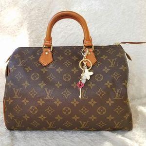 Louis Vuitton Speedy 30 Handbag Monogram